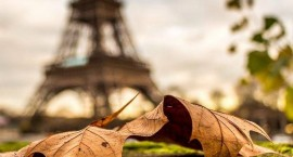 automne © herve_in_paris : Instagram